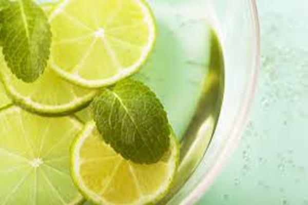 limones granavida zumo de granada