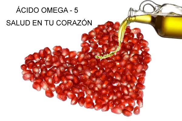 ÁCIDO OMEGA -5 600 X 400 - copia
