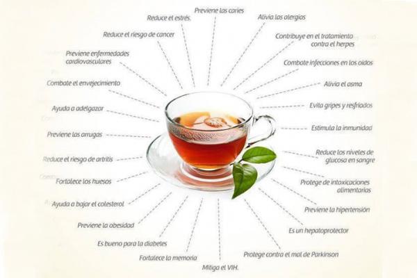 zumos-antioxidantes3